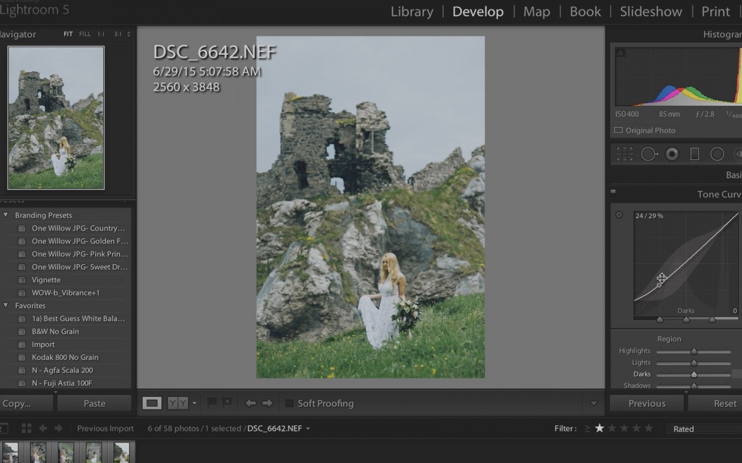 Lightroom (Histogram & Tone Curve)